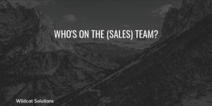 sales team management everyone in the business