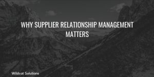 why do supplier relationships matter
