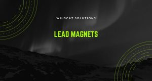 how lead magnets can attract the customers you want